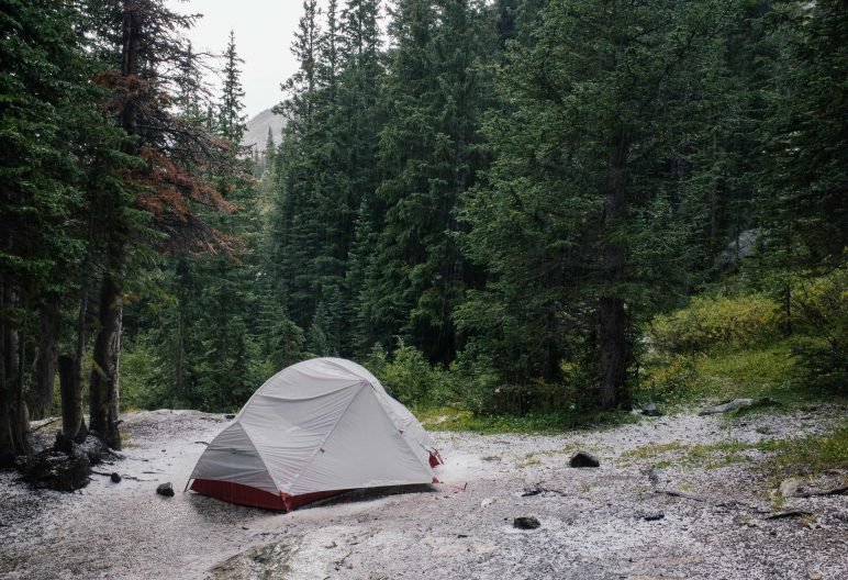 Tent in a forest